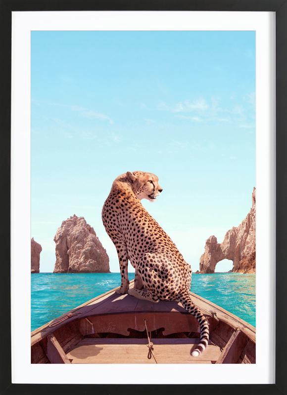 Los Cabos Framed Print