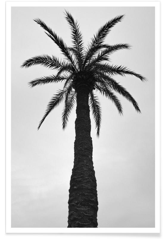 Palm Love Poster