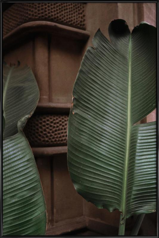 Leaves in Barcelona -Bild mit Kunststoffrahmen