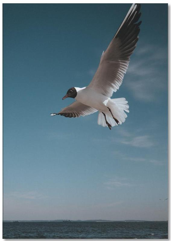 Seagulls IX Notepad