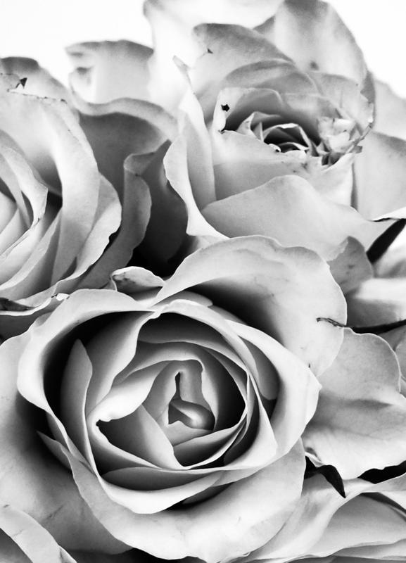 Flowers for my Mom -Leinwandbild