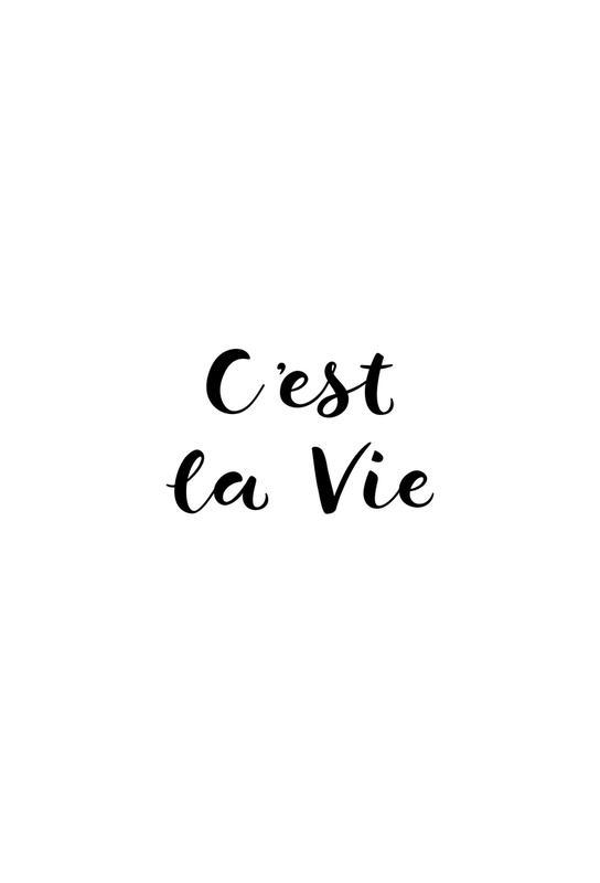 C'est la Vie -Acrylglasbild
