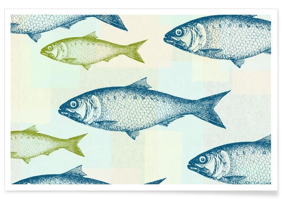 Vintage Fish affiche