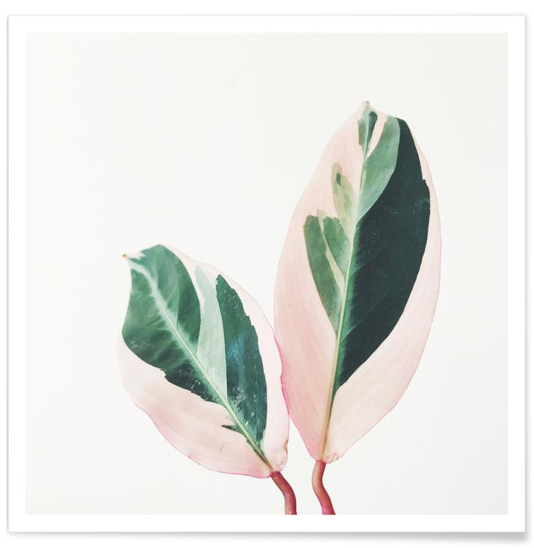 Pink Leaves -Poster