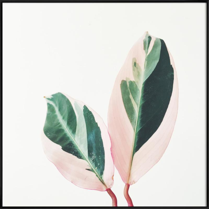 Pink Leaves Framed Poster