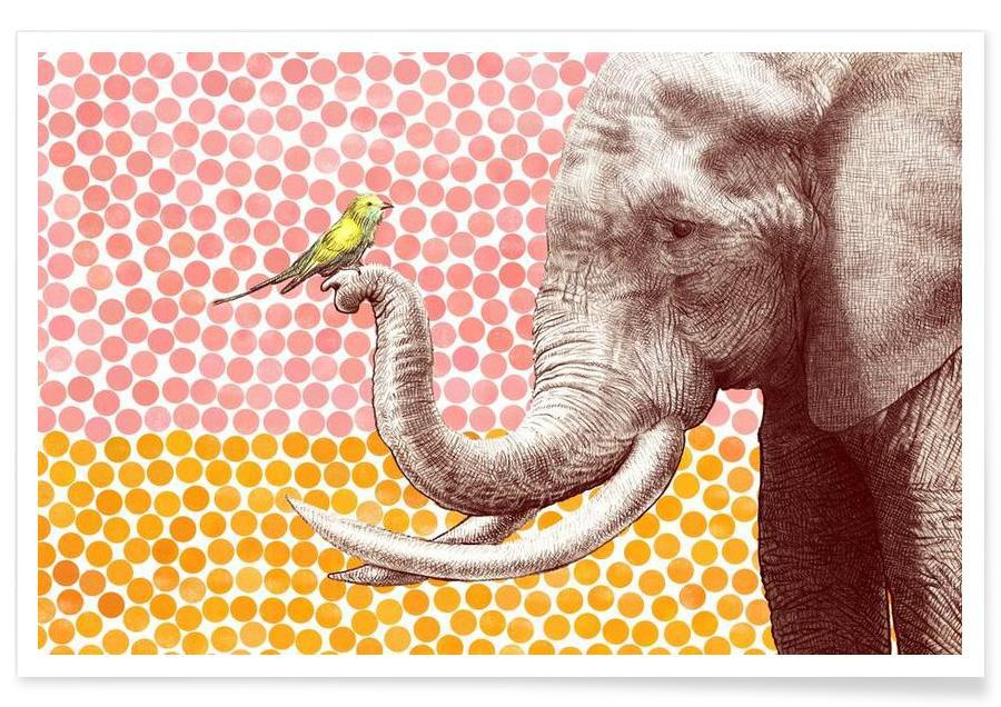 Elephant and Bird Poster