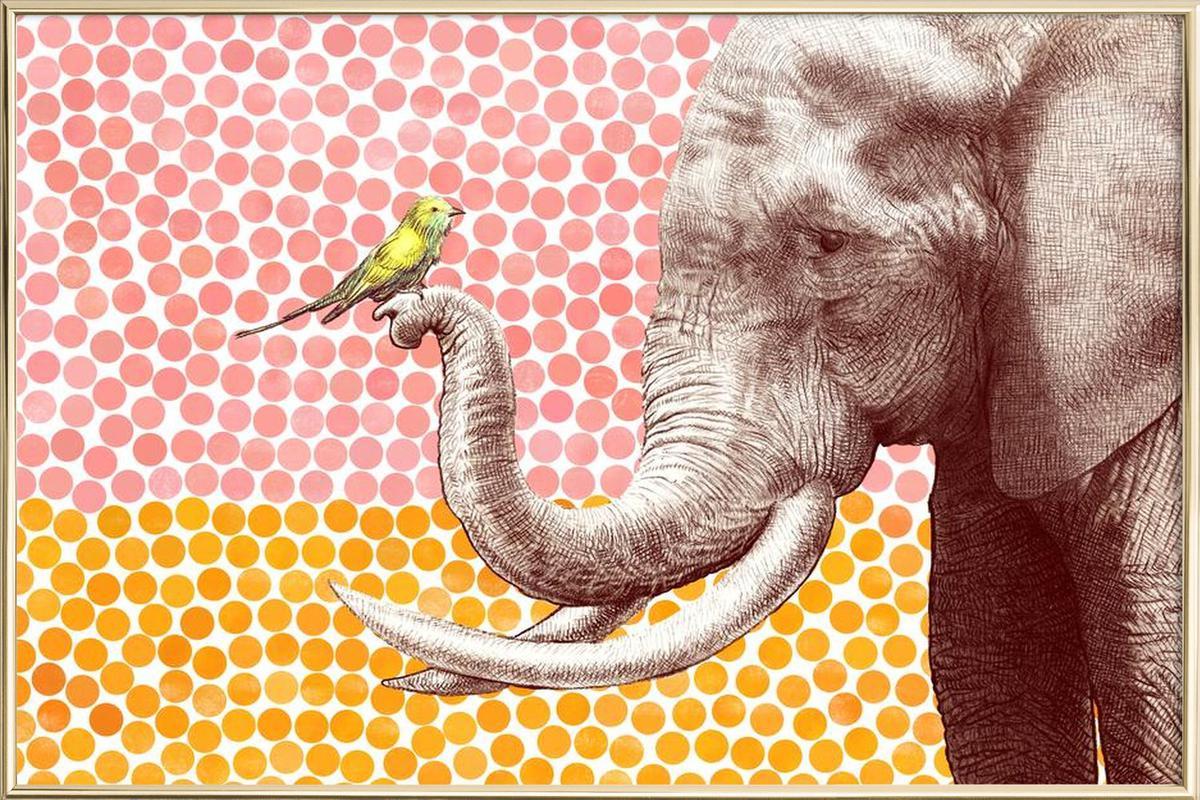 Elephant and Bird -Poster im Alurahmen