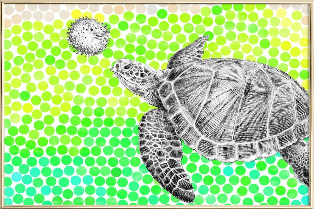 Turtle and Pufferfish poster in aluminium lijst