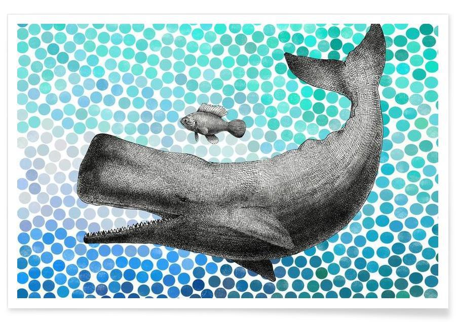 Whale and Fish affiche