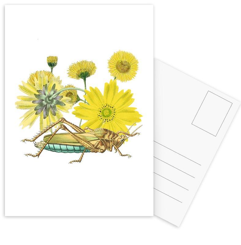 Yellow Flowers and Grasshopper Postcard Set