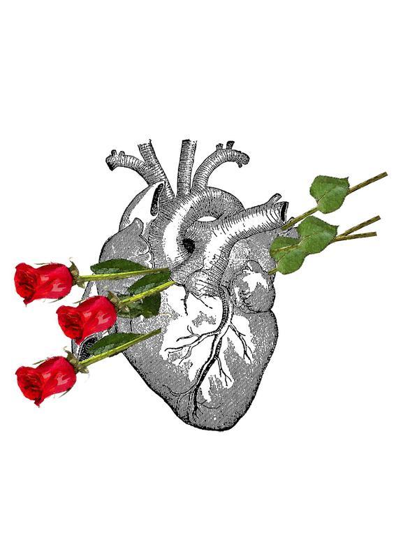 Roses Are Good Leinwandbild | Dekoration > Bilder und Rahmen > Bilder | Mehrfarbig | Holz