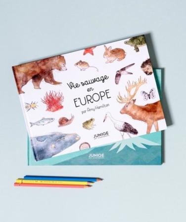 Livres pour enfants vie sauvage en europe par amy hamilton