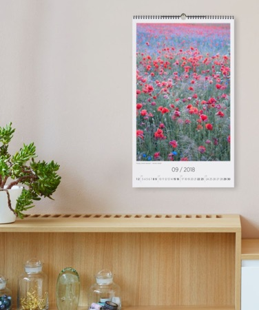 wall calendar with poppy field photograph