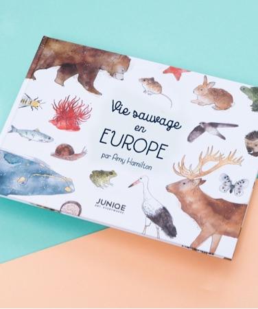 Livre enfants Vie sauvage en Europe d'Amy Hamilton avec des animaux