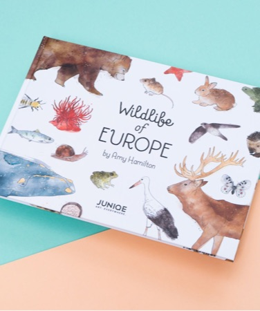 Children's book Wildlife of Europe by Amy Hamilton with several animals on the cover
