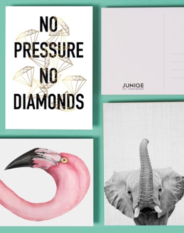 Vier ansichtkaarten met No Pressure No Diamonds, flamingo en olifant design