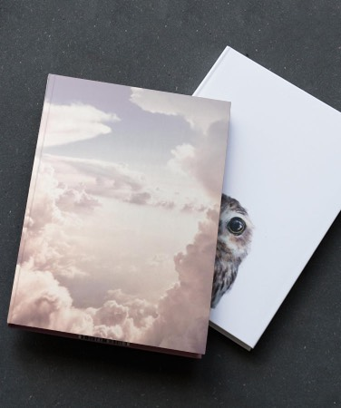 Notebooks with a pink cloud and owl design