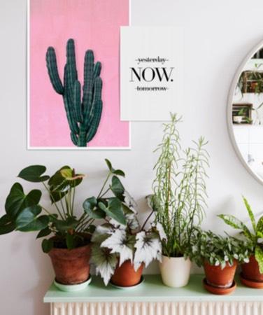 poster juniqe de cactus rose et affiches de typographie happy sur un mur