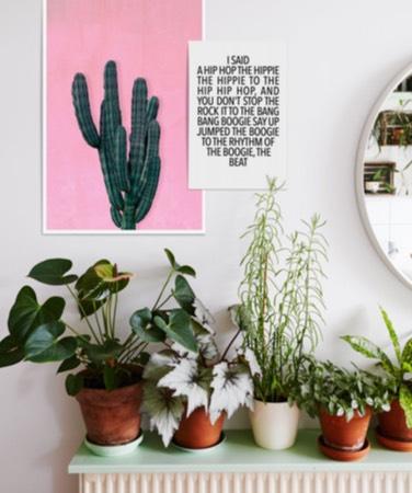 roze cactus poster en rappers delight typografie poster aan de muur