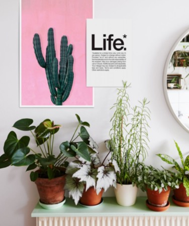 pink cactus juniqe poster and happy typography prints hanging on wall
