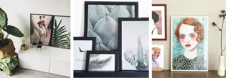 Drei Fotos mit gerahmten Botanik-Postern, Schwarz-Weiß-Fotografien und Illustration
