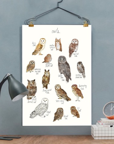 JUNIQE poster with owl illustrations hung on a hanger