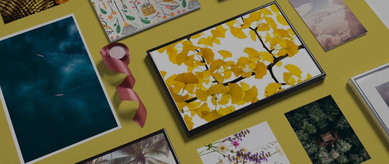 Affiches avec photo et illustration de feuilles ciels et mers vues du dessus