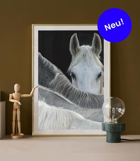 Wandbilder Online Bestellen Wanddeko Und Bilder Shop Juniqe