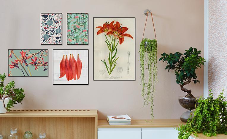 5 Blumen Und Ihre Bedeutung Muttertag Juniqe