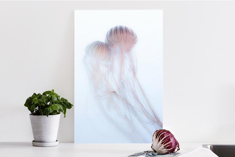 Acrylic Glass Print - Product details