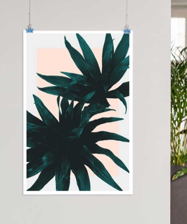 Hanging poster featuring a green plant