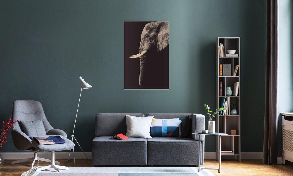 Vintage Elephant als Poster von Wouter Rikken | JUNIQE